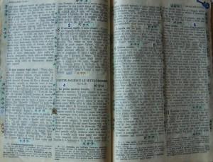 La bibbia in codice di Bernardo Provenzano